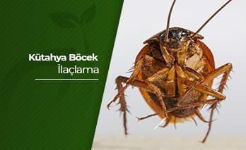 Kütahya Böcek İlaçlama
